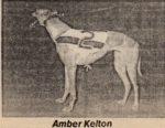 Amber Kelton